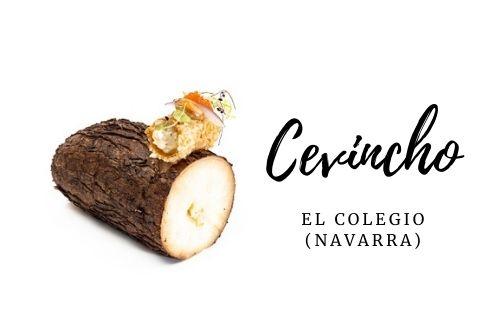 Tapa Cevincho - El colegio (Navarra)