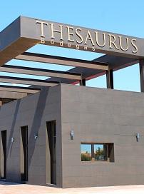 No hay imagen disponible de Thesaurus
