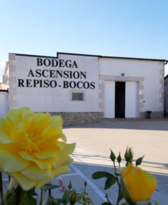 No hay imagen disponible de Bodegas Ascensión Repiso Bocos