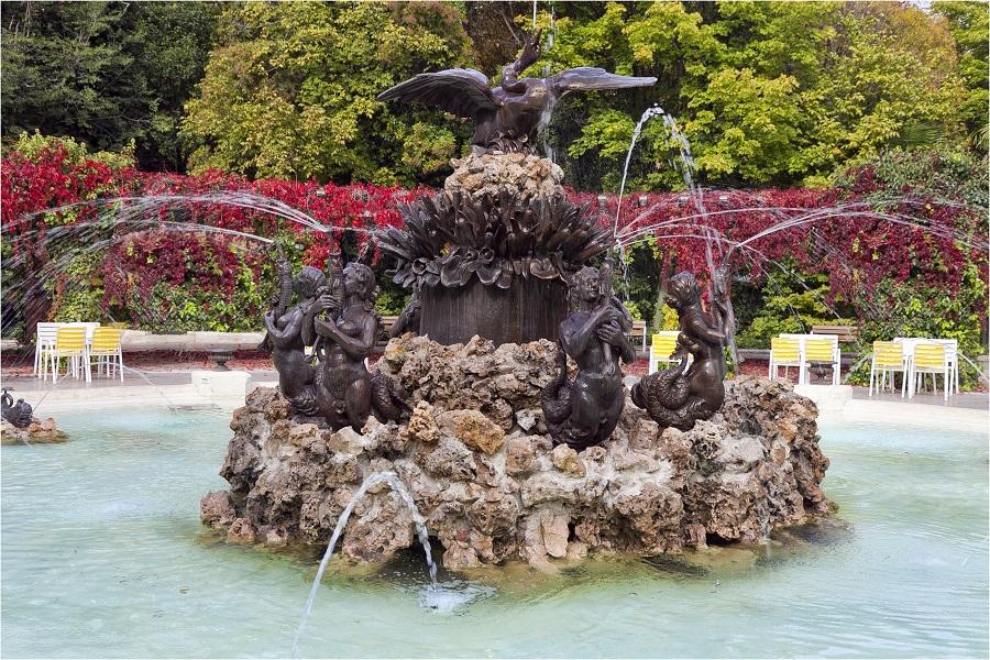 No hay imagen disponible de Swan fountain