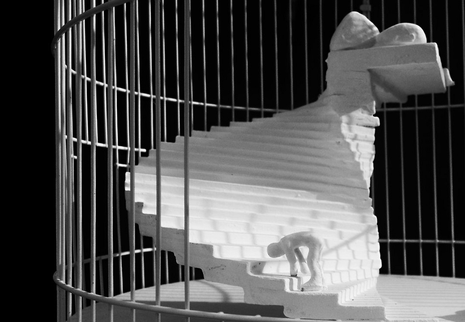 No hay imagen disponible de Una jaula salió en busca de un pájaro